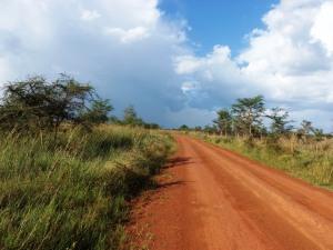 the road to Karamoja